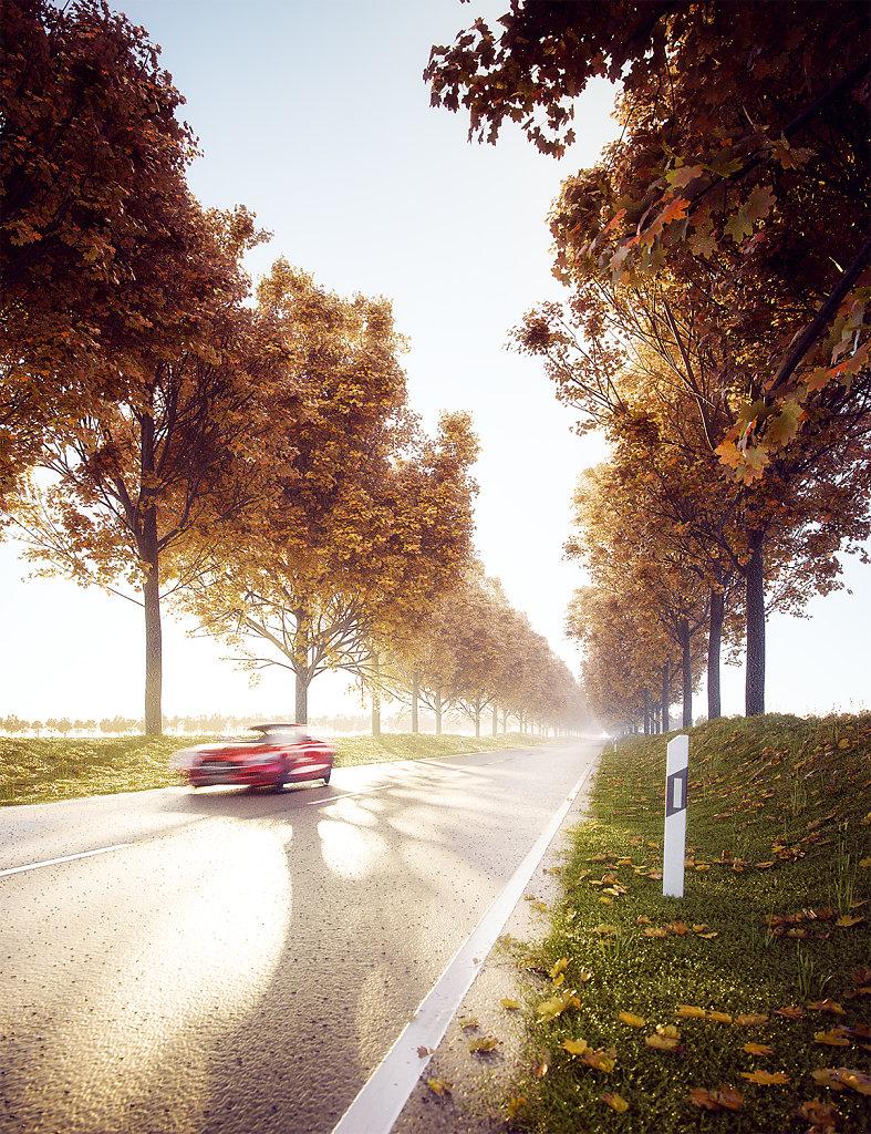01 / Autumn Drive